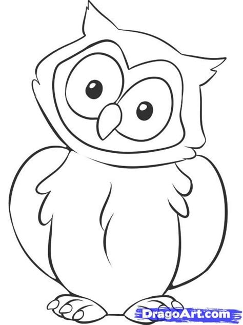 simple owl drawings 178 best owls images on barn owls owls and
