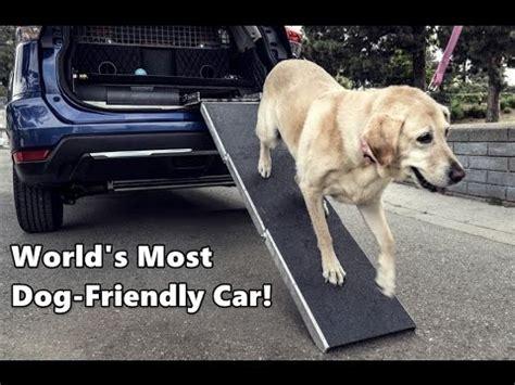 worlds  dog friendly car nissan rogue dogue youtube
