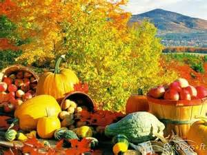 Connecticut Field Pumpkin Uk by Download Free Fall Theme Fall Theme Download