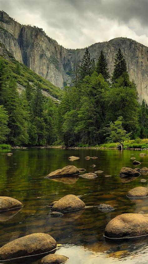 Beautiful Tree Phone Wallpaper by Beautiful Nature Mountains Water Rocks Trees
