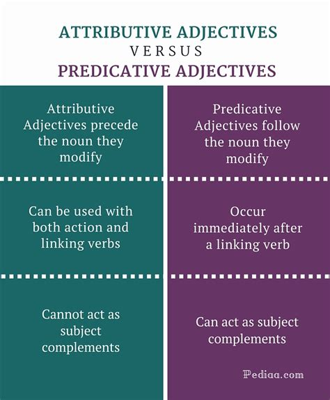 attributive and predicative adjectives worksheets difference between attributive and predicative adjectives learn grammar