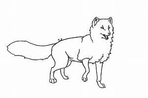 arctic fox diagram sketch coloring page With arctic fox diagram