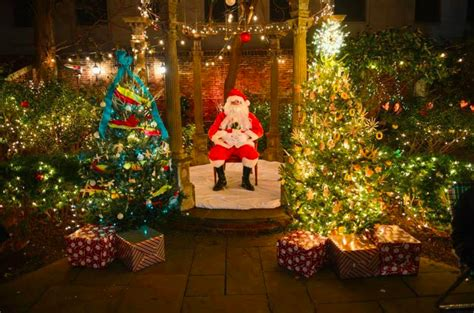 10 local tree lighting celebrations to see this season
