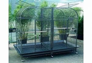 Cage A Perroquet : cage perroquet ara cielterre commerce ~ Teatrodelosmanantiales.com Idées de Décoration