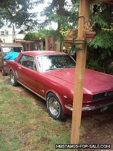1966 mustang – $1800 (tacoma) | Vintage Mustangs for sale