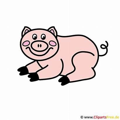 Clipart Tiere Schwein Bauernhof Piggy Clip Kostenlos