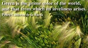 Eco Living Quotes  Quotesgram