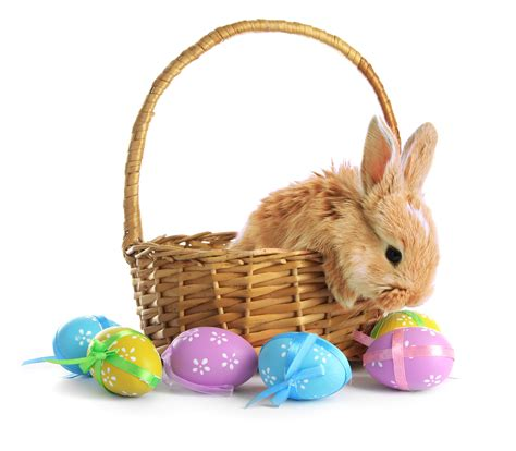 Easter Baskets Ideas With Images Magment