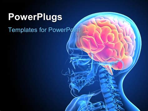 brain powerpoint templates free powerpoint template x depiction of a human with brain 16744