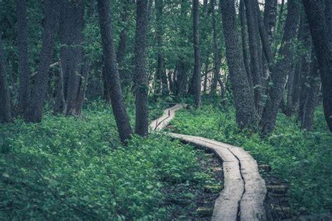 hiking trails california ghost juho maekinen flickr
