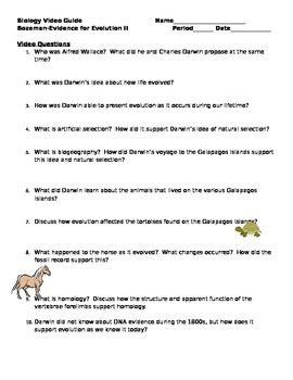 evidence for evolution worksheet resultinfos