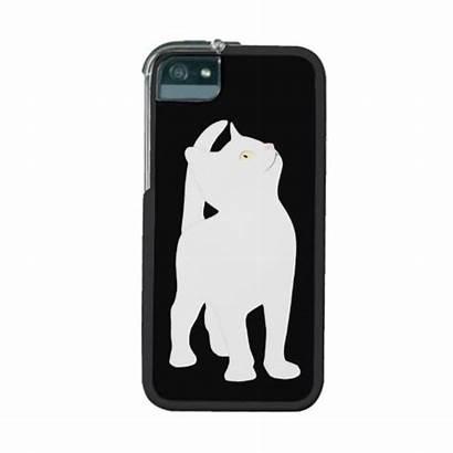 Cat 5s Iphone Zazzle