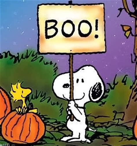 Wallpaper That Says Boo by The Randy Report Happy
