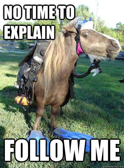 Horse Meme - 19 horses that hate their lives follow me ends of the earth and crazy friends