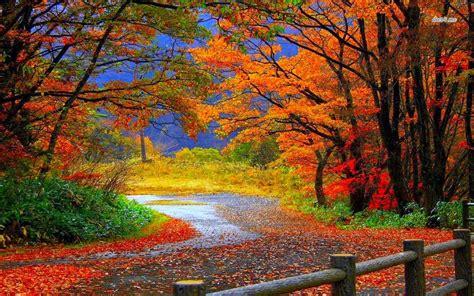 location bureau ile de güzel doğa manzara resimleri indir en bilgin bilgi