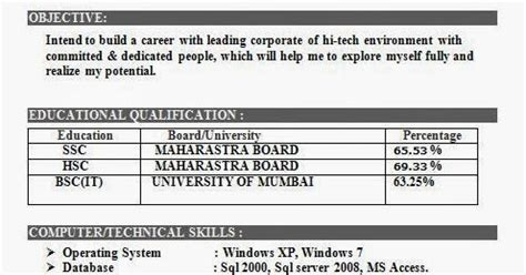 Bsc It Student Resume by Bsc It Resume Format