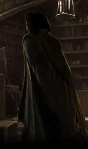 Professor Snape - Pottermore Wiki