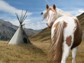 Native American Paint Horse Design