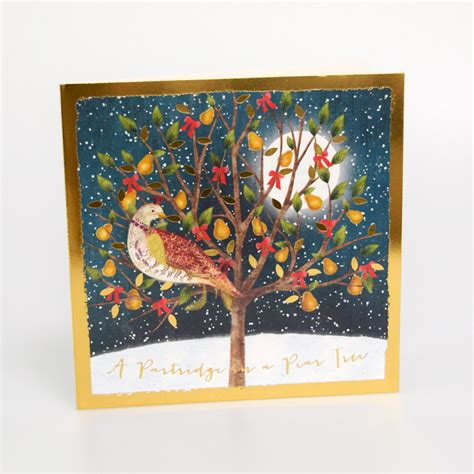Select from premium partridge pear tree images of the highest quality. Partridge in a Pear Tree Christmas Cards | Save the Children Shop