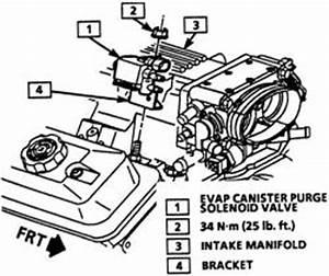 How To Remove Gm Purge Solenoid Valve GM EGR Valve Wiring