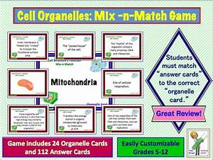 Cell Organelles Parts Of The Cell Mix Match Card Sort
