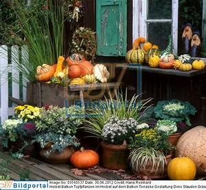 Deko Für Terrasse : details zu 0003160137 herbst balkon topfpflanzen im herbst auf dem balkon terrasse gestaltung ~ Orissabook.com Haus und Dekorationen