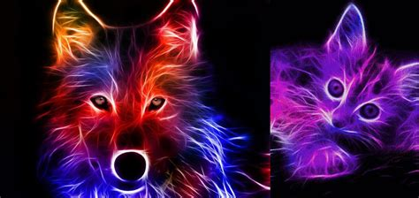 neon animal wallpapers wallpapersafari