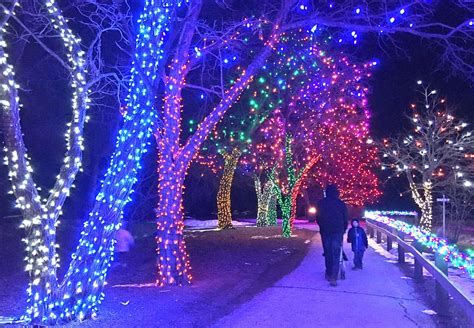 denver botanic gardens trail of lights is a hit with the