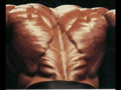 christmas tree lower back make your lower back ripped