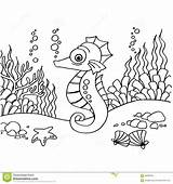 Seahorse Coloring Pages Outline Vector Template Mr Neo sketch template