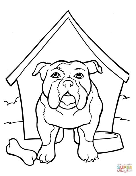 Amerikaanse Bulldog Kleurplaat by Bulldog Coloring Pages To And Print For Free