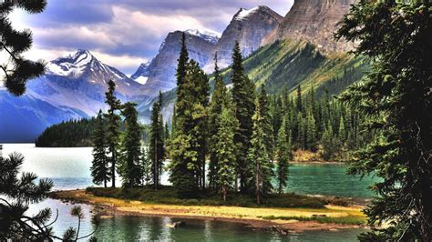 maligne lake alberta canada lake mountains trees landscape