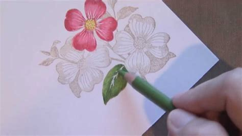 Coloring Flowers With Colored Pencils by Colored Pencil Flowers