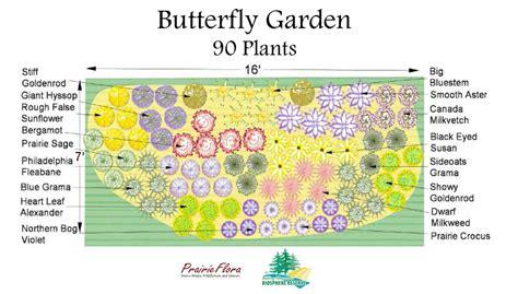 free butterfly garden ideas photograph rmbr mount