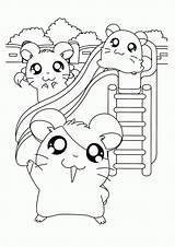 Hamster Coloring Hamtaro Kleurplaten Kleurplaat Ausmalbilder Friends Colorare Animaatjes Coloriages Ham Dieren Zum Schattig Coloriage Disegni Gratis Hamsters Colouring Printable sketch template