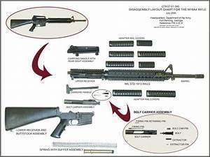 M16a2 Disassembly Layout Chart  600 U00d7450