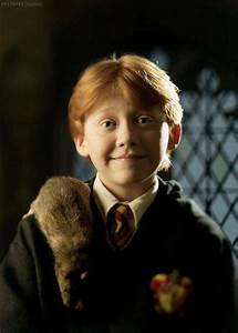 Ron and Scabbers | Harry Potter | Pinterest