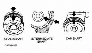 1983 Volvo 242 Serpentine Belt Routing And Timing Belt