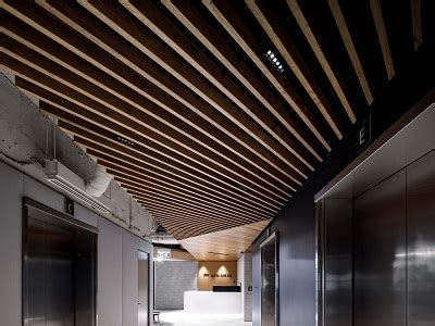 passion  timber ceilings architecture design