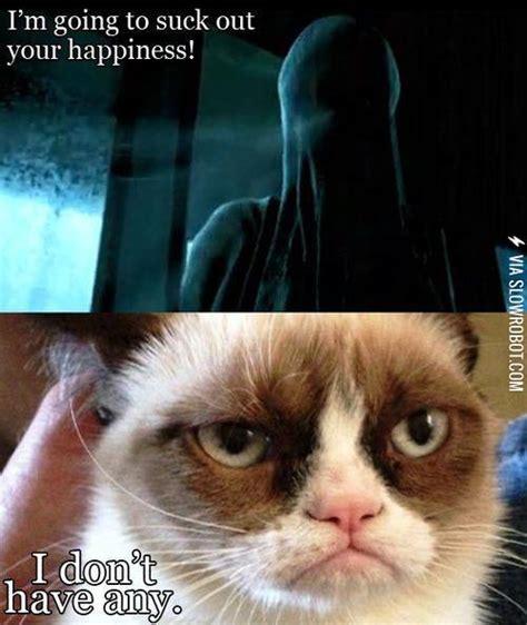 Grumpy Cat Meets A Dementor