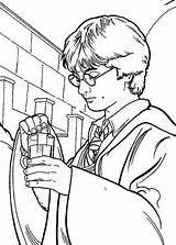 Potter Harry Coloring Potion Polyjuice Pages Print Netart sketch template