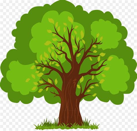 Tree Of Images Euclidean Vector Tree Vector Painted Lush Tree Png