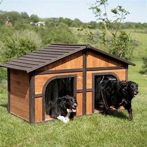 extra large solid wood dog houses suits two dogs or 1 With large dog house for multiple dogs