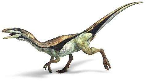 Compsognathus Facts