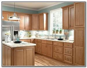 best kitchen colors with oak cabinets With best brand of paint for kitchen cabinets with physical therapy wall art