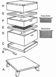 Essential Features Of The Typical Modern Beehive