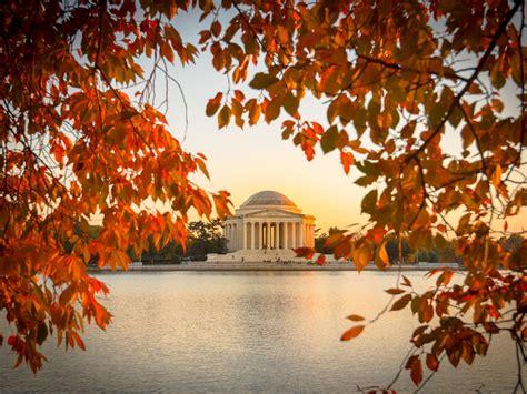 fall foliage washington dc leaves spots map story admiring maps memorial