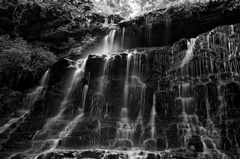 Abstract Black And White Photography Nature by Nature And Abstract Photography By Byron