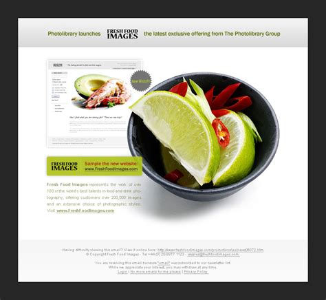 newsletter cuisine 16 revolutionary email newsletter designs