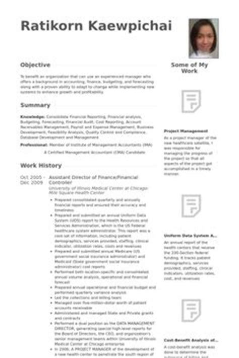 company profile sles template financial controller resume template premium resume
